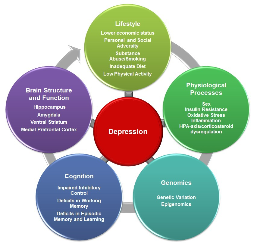 pals depressionepidemiological studies have identified multiple risk factors for mental disorders risk factors are characteristics or exposures that increase the